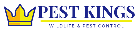 Pest Kings Wildlife And Pest Control
